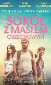 Sokół z masłem orzechowym online / The peanut butter falcon online (2019) | Kinomaniak.pl