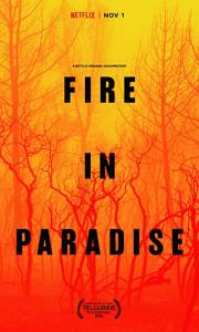 Pożar w raju online / Fire in paradise online (2019) | Kinomaniak.pl