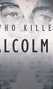 Kto zabił malcolma x? online / Who killed malcolm x? online (2019-) | Kinomaniak.pl