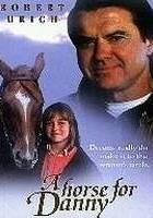 A horse for danny online (1995) | Kinomaniak.pl