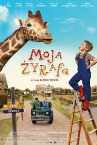 Moja żyrafa online / Dikkertje dap online (2017) | Kinomaniak.pl