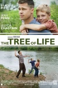 Drzewo życia online / Tree of life, the online (2011) | Kinomaniak.pl