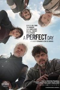 Perfect day, a online (2015) | Kinomaniak.pl