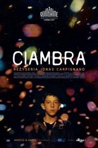 Ciambra online / Ciambra, a online (2017) - nagrody, nominacje | Kinomaniak.pl