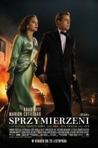 Sprzymierzeni online / Allied online (2016) | Kinomaniak.pl