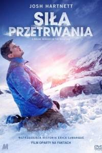 Siła przetrwania online / 6 below: miracle on the mountain online (2017) | Kinomaniak.pl