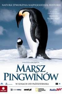 Marsz pingwinów online / La marche de l'empereur online (2005) | Kinomaniak.pl
