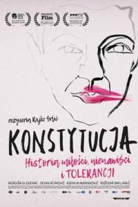 Konstytucja online / Ustav republike hrvatske online (2016) | Kinomaniak.pl