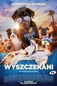 Wyszczekani/ Show dogs(2018)- obsada, aktorzy | Kinomaniak.pl
