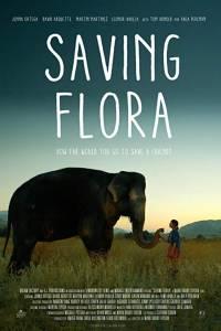 Ratujmy florę online / Saving flora online (2018) | Kinomaniak.pl