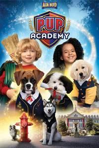 Psia akademia online / Pup academy online (2019) | Kinomaniak.pl