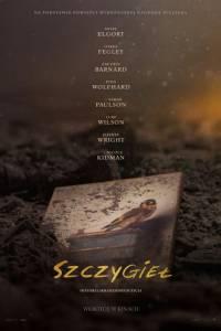 Szczygieł online / The goldfinch online (2019) | Kinomaniak.pl