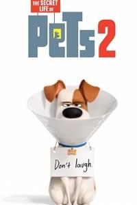 Sekretne życie zwierzaków domowych 2 online / The secret life of pets 2 online (2019)   Kinomaniak.pl