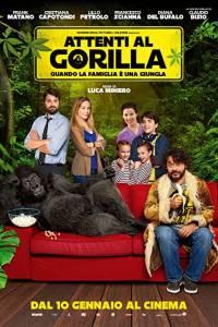 Uwaga na goryla online / Attenti al gorilla online (2019)   Kinomaniak.pl