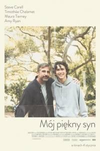 Mój piękny syn online / Beautiful boy online (2018) | Kinomaniak.pl