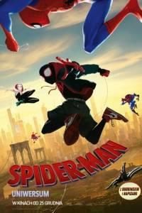 Spider-man uniwersum online / Spider-man: into the spider-verse online (2018) | Kinomaniak.pl