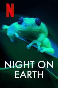 Ziemia nocą online / Night on earth online (2020) | Kinomaniak.pl