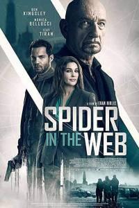 Pająk w sieci online / Spider in the web online (2019)   Kinomaniak.pl