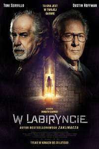 W labiryncie online / L'uomo del labirinto online (2019) | Kinomaniak.pl