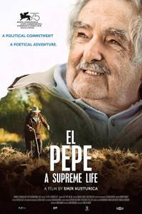 El pepe: wyjątkowe życie online / El pepe, una vida suprema online (2018) | Kinomaniak.pl