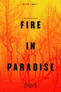 Pożar w raju online / Fire in paradise online (2019)   Kinomaniak.pl