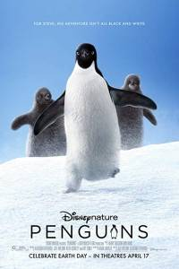 Pingwiny online / Penguins online (2019) | Kinomaniak.pl