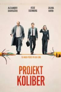 Projekt koliber online / The hummingbird project online (2018) | Kinomaniak.pl