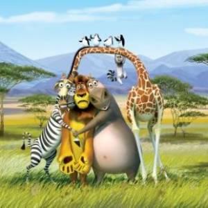 Madagaskar 2 online / Madagascar: escape 2 africa online (2008) | Kinomaniak.pl