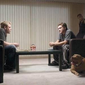 Alpha dog online (2006) | Kinomaniak.pl