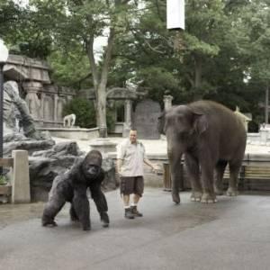 Heca w zoo/ Zookeeper(2011) - zdjęcia, fotki | Kinomaniak.pl