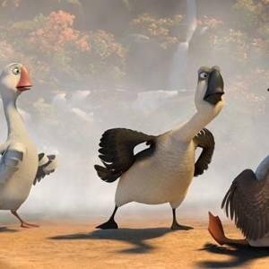Kaczki z gęsiej paczki/ Duck duck goose(2018) - zdjęcia, fotki | Kinomaniak.pl